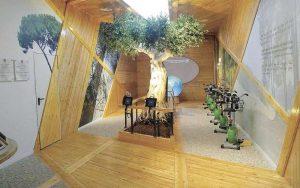 """מרכז חדש - יער אילנות צילום באדיבות לשכת הדוברות קק""""ל"""