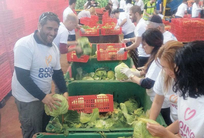 מתנדבים בעמותת לקט ישראל. צילום לקט ישראל