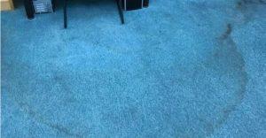 שטיח בספרייה העירונית