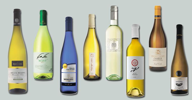 """יינות. צלומים, אסף לוי, איל קרן, יח""""צ, באדיבות חברת הכרם"""