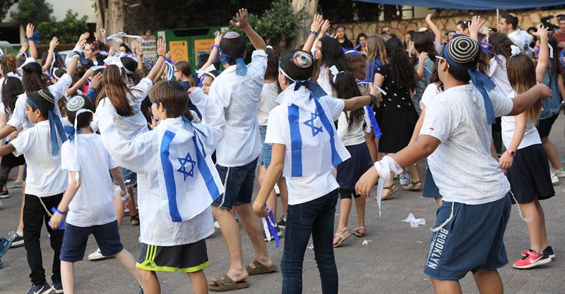 פעילי תנועות הנוער במהלך הפעילויות צילום: שגיא שלפר