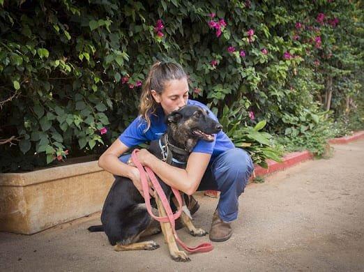 המתנדבת ניצן קוך והכלבה קלרה. קרדיט: נטלי פוקס