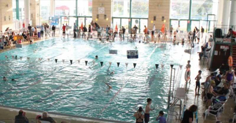 תחרות השחייה בבריכה העירונית, קרדיט אסף שדה