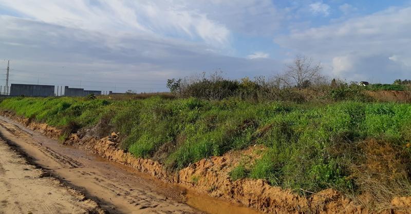הקרקע בין פרדס משותף לכביש 531
