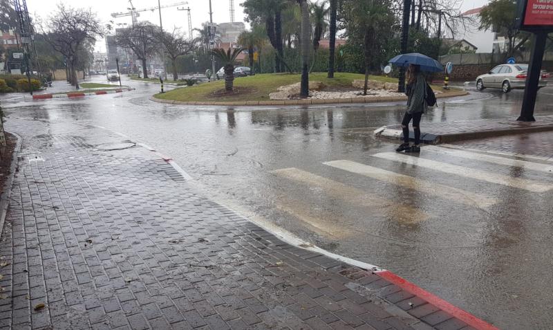 גשם ברעננה. צילום: רונן מקובר