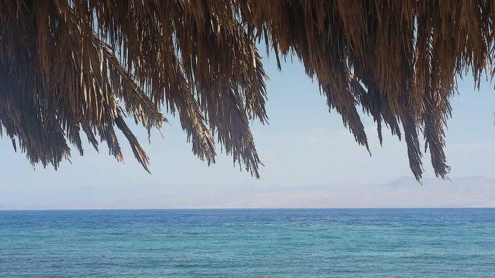 חופי סיני צילום מאיה הורודניצ'אנו