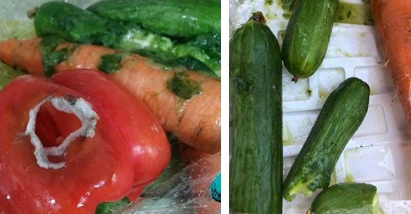 """ירקות רקובים שנשלחו לגנים. צילום: התמונות צורפו למכתב מהדיאטנית העירונית ל""""מבושלת"""""""