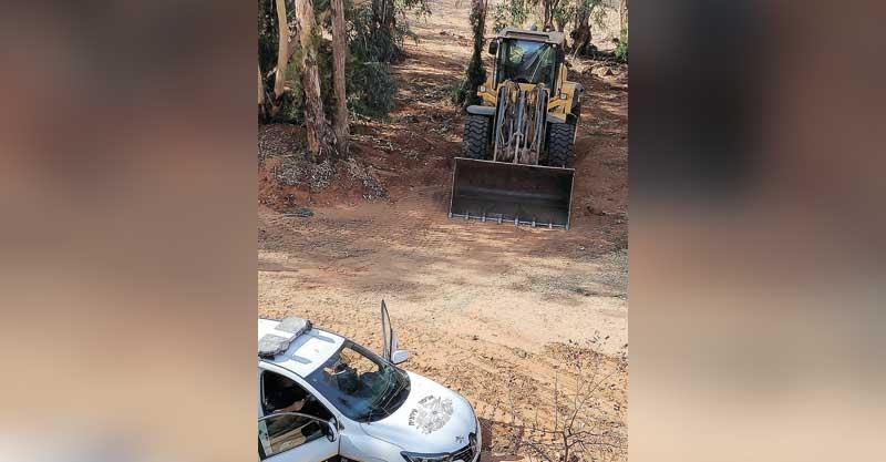 עבודות סניטציה ביער אוסישקין. צילום ארז לבנה