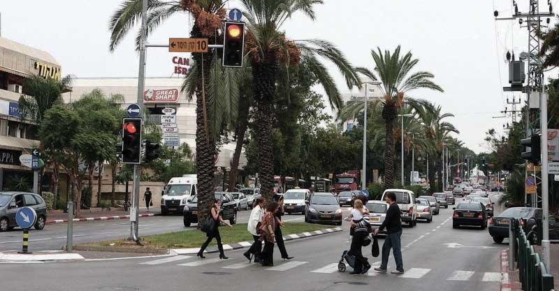 רחוב אחוזה רעננה צילום עזרא לוי