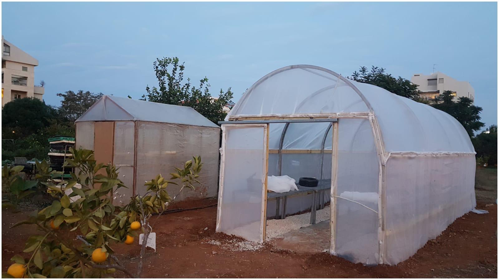 החממה הנגישה בגינה הקהילתית פעמונים, צילום: יעל רוזנבוים