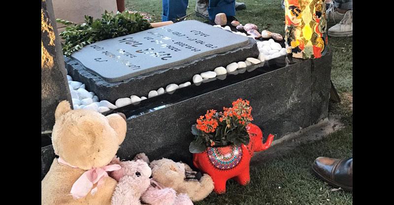 """עציץ הפיל בקברה של זוהר ציזנר ז""""ל. צילום עדי כהן ציזנר"""